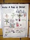 invite-bug-01.jpg