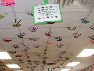 ceiling-bugs.jpg